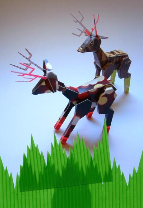 green grass deer_sarah
